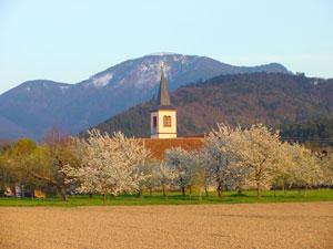 Copyright: Haus Schutzbach in Staufen im Breisgau